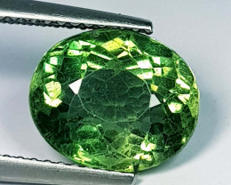 4.30 ct Excellent Gem Oval Cut Natural Green Apatite