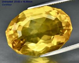 On Hold 33.67ct VVS1 Premium Fluorite - Premium / Canada / 23.62 x 16.99 mm