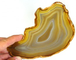 COLLECTORS TOP LARGE SLAB AGATE  104 GRAMS TR 618
