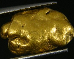 AUSTRALIAN  ALLUVIAL GOLD NUGGET 1.99  GRAMS  LGN 736
