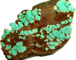 TURQUOISE SLABS NEVADA 45.15 CTS [F 1652]