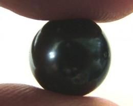 TAHITIAN PEARLS -BLACK-  10/11 MM [PF1127 ]