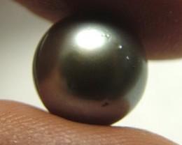 TAHITIAN PEARLS -BLACK/GREY-  11/12 MM [PF1136 ]