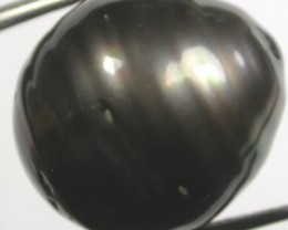 TAHITIAN PEARLS-LARGE BLACK BAROQUE PEARL-15/16 MM [PF1142 ]