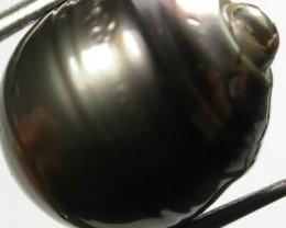 TAHITIAN PEARLS -BLACK BAROQUE PEARL-  14/15  MM [PF1150 ]