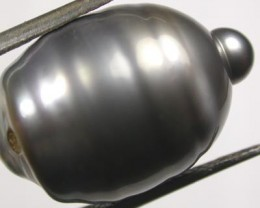 TAHITIAN PEARLS -BLACK BAROQUE PEARL-  13/14  MM [PF1153 ]