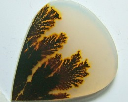 5.50 CTS AGATE DENDRICTIC NICE PATTERNS    SG- 446