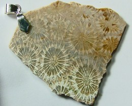 65.15  CTS FOSSIL CORAL PENDANT  SG-509