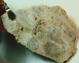 FOSSIL CORAL PENDANT  72.10 CTS SG- 512