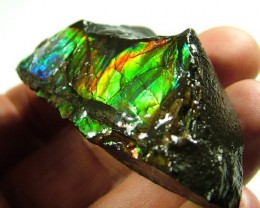FIREY AMMOLITE SPECIMEN -HOT NEON COLOUR  400 CTS [MX6148  ]