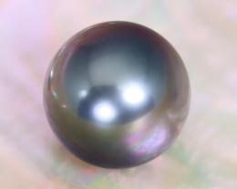 Tahitian Pearl 10.7mm Natural Tahitian Black Salt Water Pearl A2311
