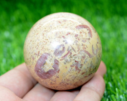 1300 CTs Beautiful Healing  Fossil Stone Sphere  From Pakistan