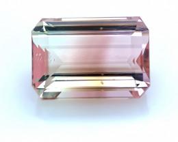 Natural Bi Color Tourmaline 11.55 Cts, Excellent Quality Gemstone