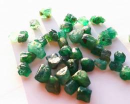 Rough Natural Emerald - Brazil - 40 Units - 48.10 ct