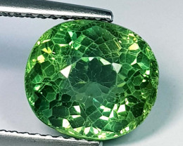 4.57 ct Excellent Gem Oval Cut Natural Green Apatite