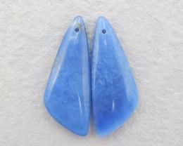 D2922 - 32cts New!Handmade Blue Jasper Earrings Beads,Jewelry Supplier,Ston