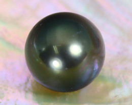 Tahitian Pearl 10.7mm Natural Tahitian Black Salt Water Pearl C1936