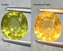 1.35ct Color Change Mali Garnet - Mali / 6.2x5.7mm