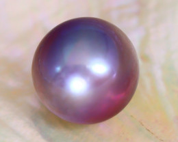 13.0mm 15.73Ct Natural Oceania South Sea Purple Pearl A2229