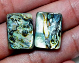 19.15 CTS  ABALONE SHELL BEAD (Pair) AMAZING PATTERN PG-1820