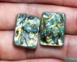 ABALONE SHELL BEAD (Pair) AMAZING PATTERN 19.30 CTS PG-1822