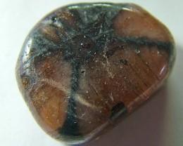 Rare chiastolite stone      68.35 cts.         AS 5199