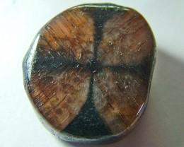 Rare chiastolite stone      64.10 cts.         AS 5200