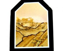 PICTURE JASPER STONE  'INTARSA' 66.85 CTS [MX 6340]