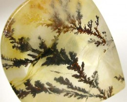 DENDRITIC AGATE FROM BRAZIL 18.55 CTS [TS590  ]