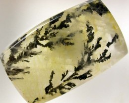 DENDRITIC AGATE FROM BRAZIL 15.85 CTS [TS589  ]