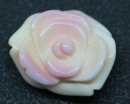CONCH SHELL ROSE CARVING HALF DRILLED 24CTS LT-420