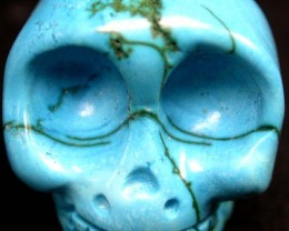 COOL TURQUOISE SKULL 60.05 CTS [G13]