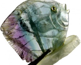 COLOURFUL FLUORITE FISH CARVING  94.70 CTS[MX7186 ]