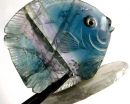COLOURFUL FLUORITE FISH CARVING  113.10 CTS[MX7187 ]