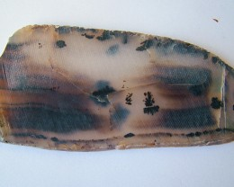 196.05 CTS Natural Dendritic Agate Cut Stone   LG-1592