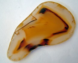 127.75 CTS Natural Dendritic Agate Cut Stone   LG-1586
