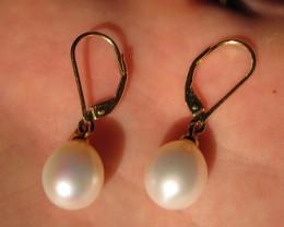 14k gold white freshwater pearl earrings 9-10mm  P14