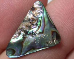 NATURAL PAUA SHELLS 2.65CTS GR 1180