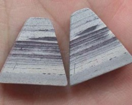 PAIR OF ZEBRA ROCK STONES  19.1CTS  G1281