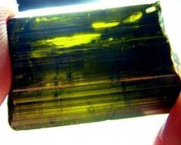 TOURMALINE ROUGH GOLDY DEEP GREEN COLLECTOR PC 54 CTS RG-63