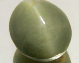 4CTW APATITE CAT'S EYE