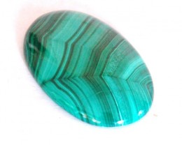 AAA  Malachite cabochon with 'Spiders web' Markings 92ct