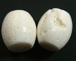CORAL WHITE BEAD DRILLED(2 PC) 55 CTS  NP-1400