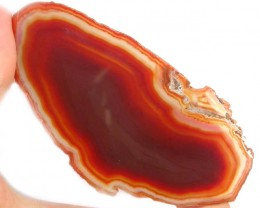 POLISHED BRAZILIAN AGATE SLICE  322.00 CTS OPMY122