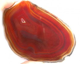 POLISHED BRAZILIAN AGATE SLICE WITH DRUZY 393.35 CTS OPMY123