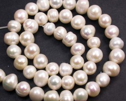 'QUALITY DEAL'  PEARL STRAND 8-9 MM 176.95 CTS [PF2080]