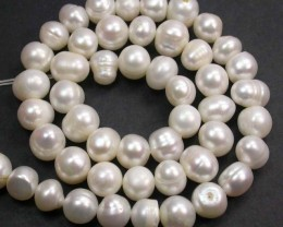 'QUALITY DEAL'  PEARL STRAND 8-9 MM 177.00 CTS [PF2083]