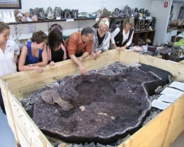 ONE OF WORLDS LARGEST AMETHYST POND GEODE 1.04 TONNES NFS
