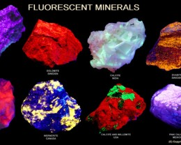 Professional Collectors Fluorescent mineral display