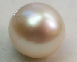 AAA GRADE ROUND PEARL  HIGH LUSTER- 10-11  MM [PF2253]